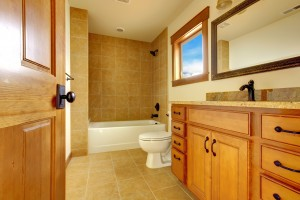 Toilet Repair Byron MN